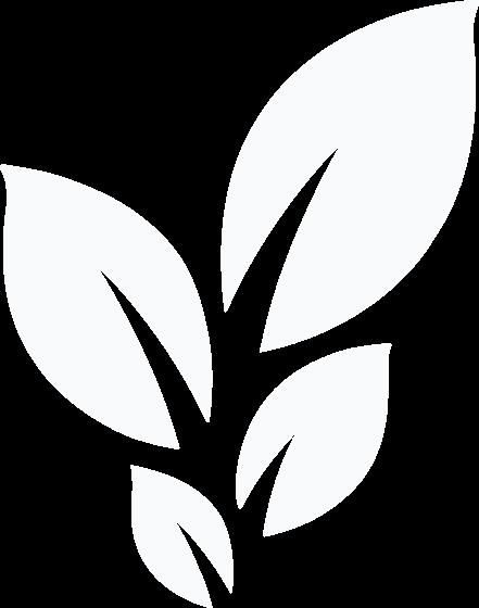 DCC Leaf Logo