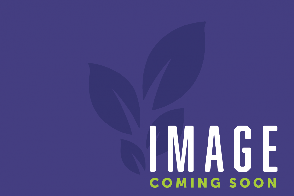 Event - Image Coming Soon